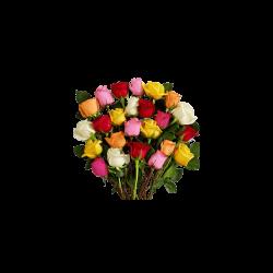 Flori la fir