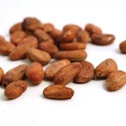 Boabe de cacao crude image
