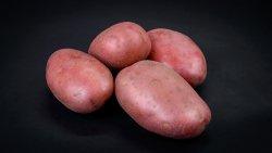 Cartofi roșii image