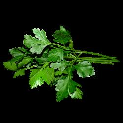 Patrunjel Verde image