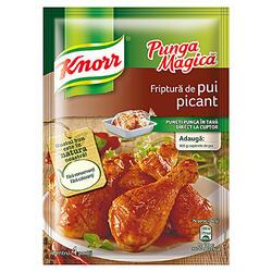 Knorr Pungă Magică Cond.Pui Picant 29 g