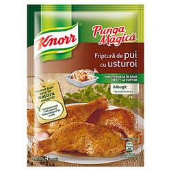 Knorr Pungă Magică Condim Pui+Usturoi 28 g