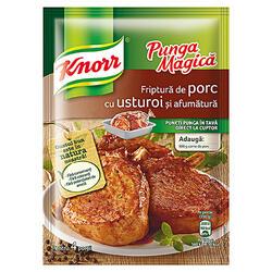 Knorr Pungă Magică Porc/Usturoi/Afum29G