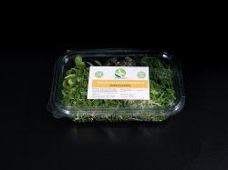 Microplante salata image