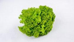 Salată verde creață image