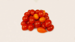 Rosii cherry romanesti pentru salata image