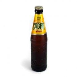 Cobra beer image