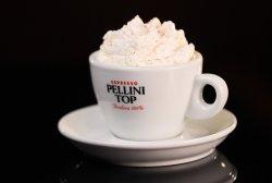 Cappuccino Vienez Pellini