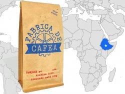 Decaf Etiopia